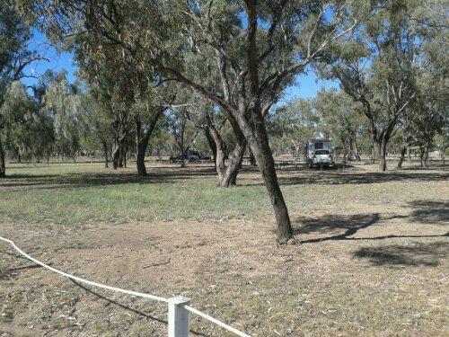 Alex Trevallion Park camping ground in Walgett