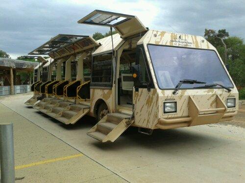 Safari tour bus