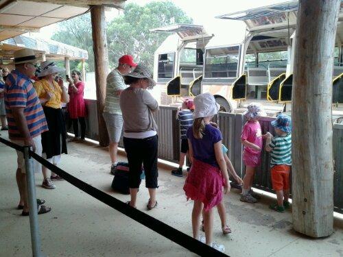 Waiting for the safari tour bus