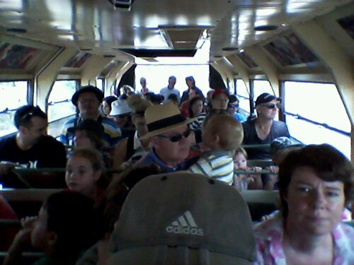 I am not sure which was wilder, the kids' noise inside the safari bus, or the animals outside!